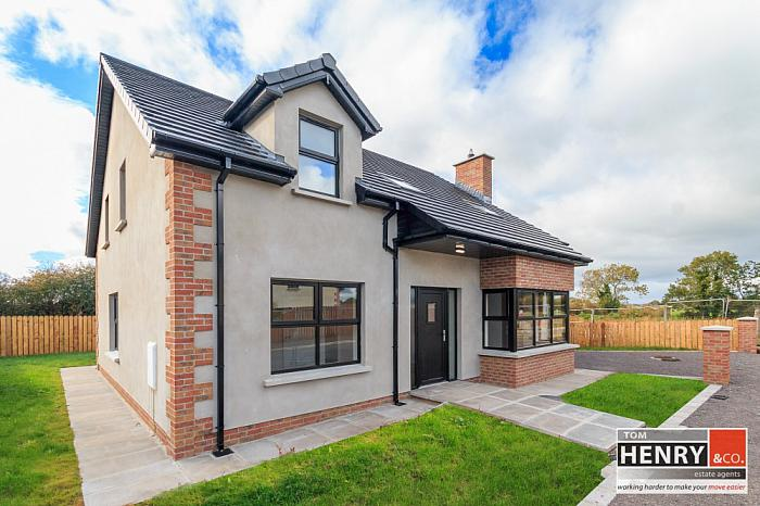 12 WILLOW PARK, DUNGANNON