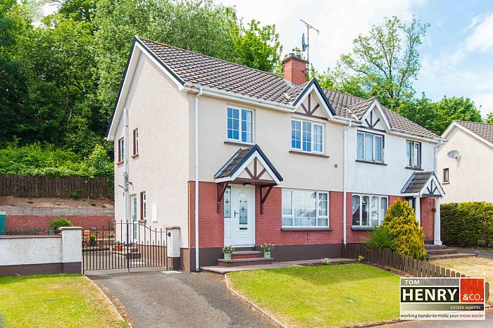 19 PARKWOOD MANOR, DUNGANNON