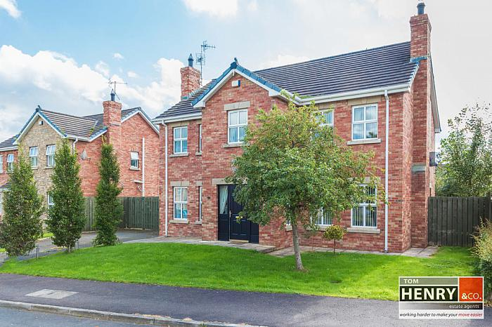 5 HOLLOW MILLS MEADOWS, DUNGANNON