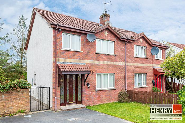 61 CASTLEVIEW HEIGHTS, DUNGANNON